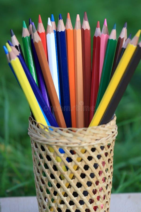 Barwioni ołówki z koszem wiedza na trawie obraz stock