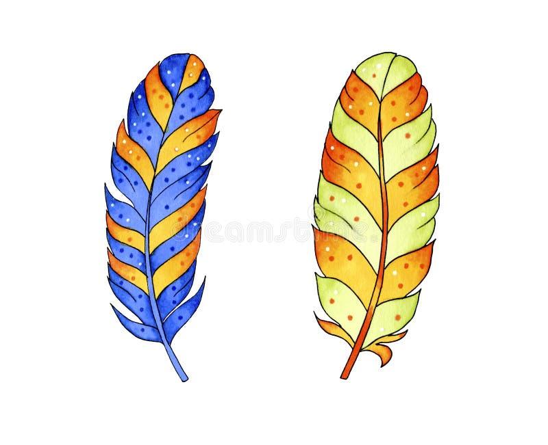 Barwioni piórka odizolowywający na bielu ilustracja wektor