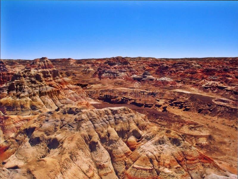 barwniki pustyni fotografia royalty free