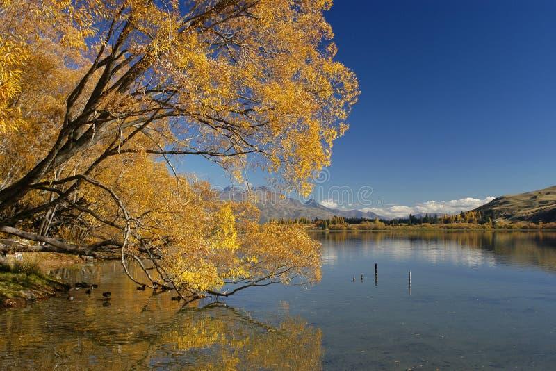 barwy jesieni fotografia stock