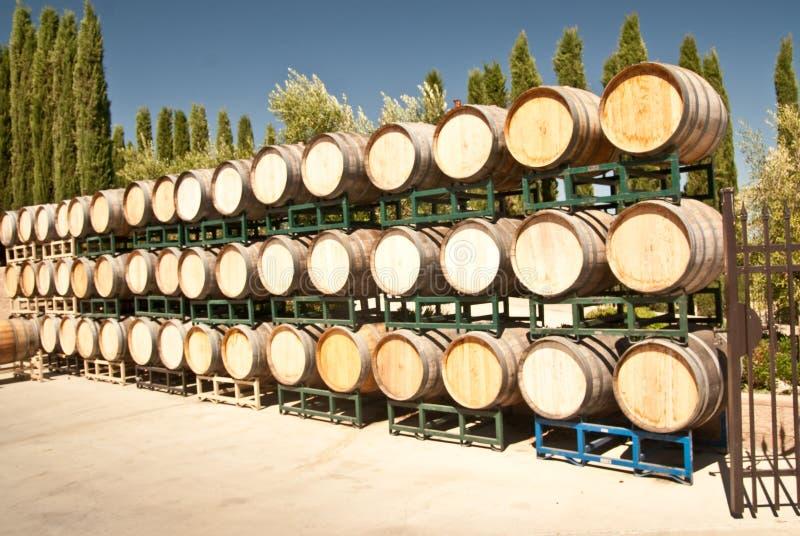 baryłki dębowych wino obraz royalty free