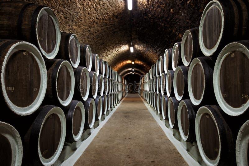 Baryłki w wino lochu fotografia stock