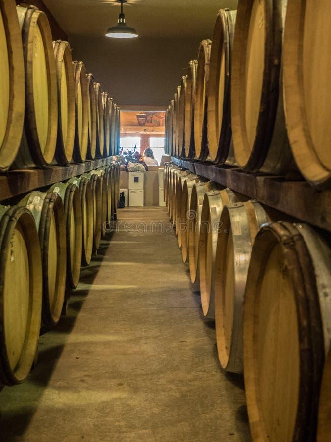 Baryłki wino w wytwórnia win lochu zdjęcia royalty free