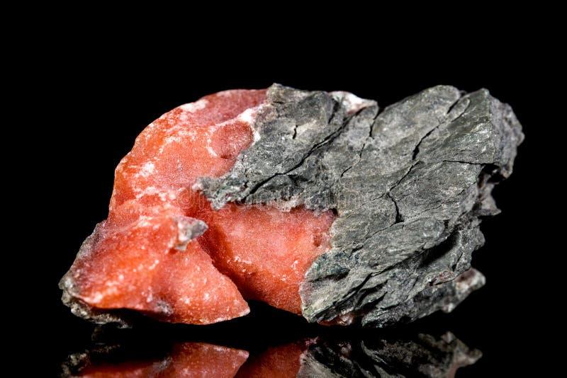 Baryte rosso crudo su roccia madre, pietra minerale davanti a fondo nero fotografie stock