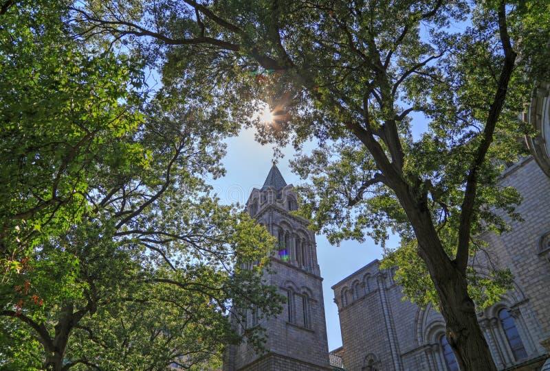 Basílica de la catedral del Saint Louis foto de archivo