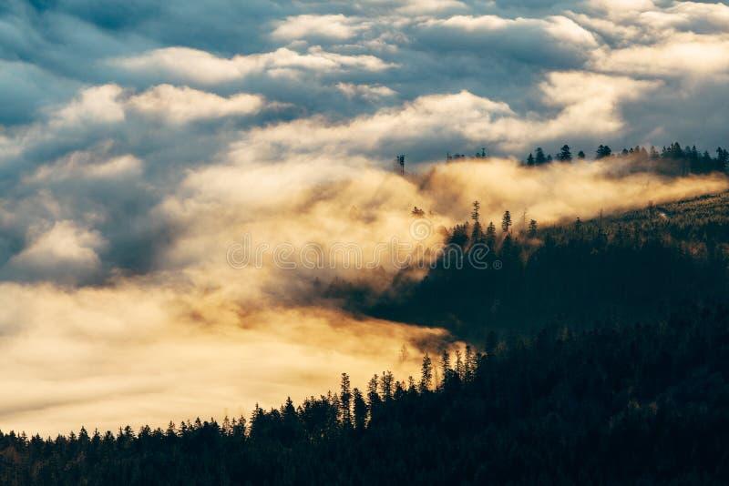Bas nuages de matin photographie stock