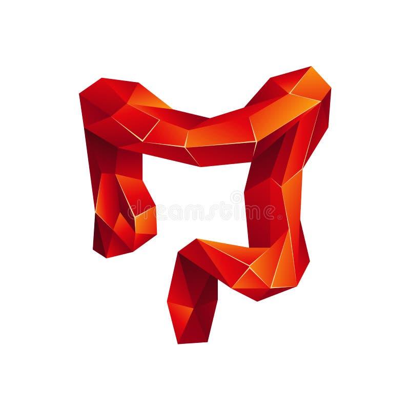 Bas poly deux points humains rouges sur un fond blanc Organe abstrait d'anatomie Gros intestin dans le style du polygone 3D illustration libre de droits