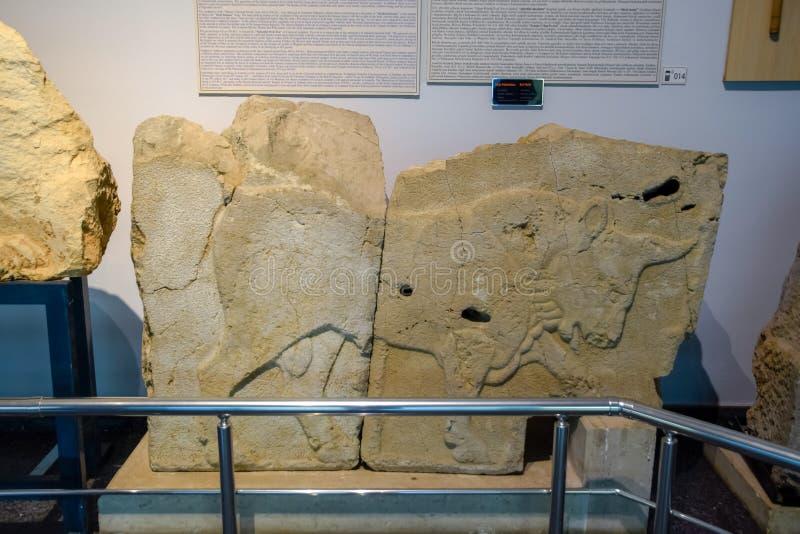 Bas-relevo de um touro em uma pedra, uma parte de museu no museu das antiguidade de Antalya fotos de stock royalty free