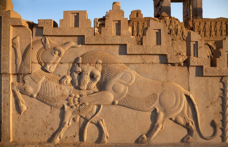 Bas Relief Carving av en Lion Hunting en tjur i Persepolis av Shiraz arkivfoton