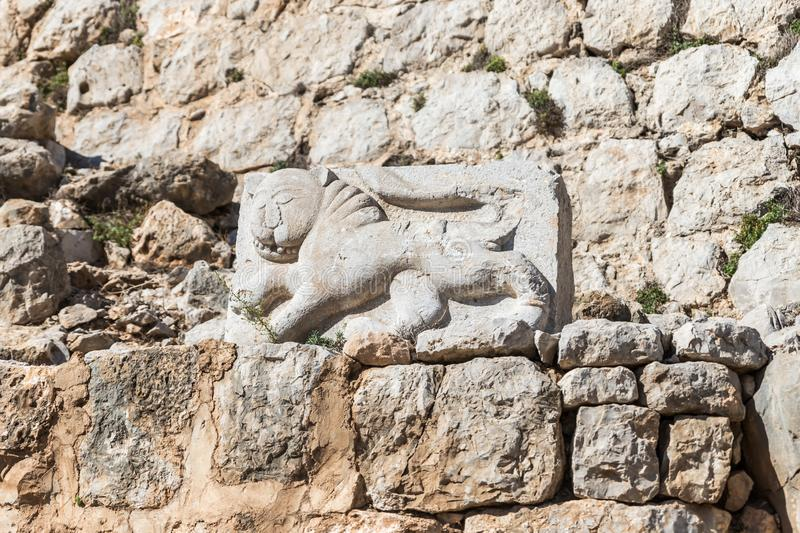 Bas-relief of a lion extruded on a stone in the courtyard of Nimrod Fortress located in Upper Galilee in northern Israel on the bo stock photos