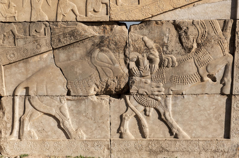 Bas-relief of persepolis ruins,Shiraz IRan stock images