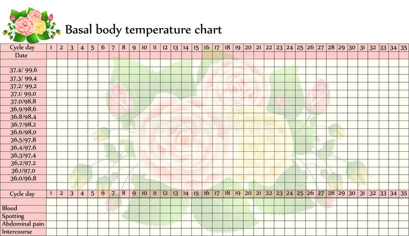Basal body temperature chart. With beautiful roses at the background. Calendar helps predict most fertile time of the month (ovulation royalty free illustration