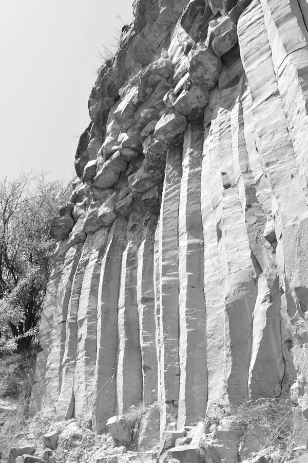 Basaltet vaggar kolonnen är vulkanisk vaggar utlöpare i form av den columnar basaltet som lokaliseras i Racos, Rumänien arkivbilder