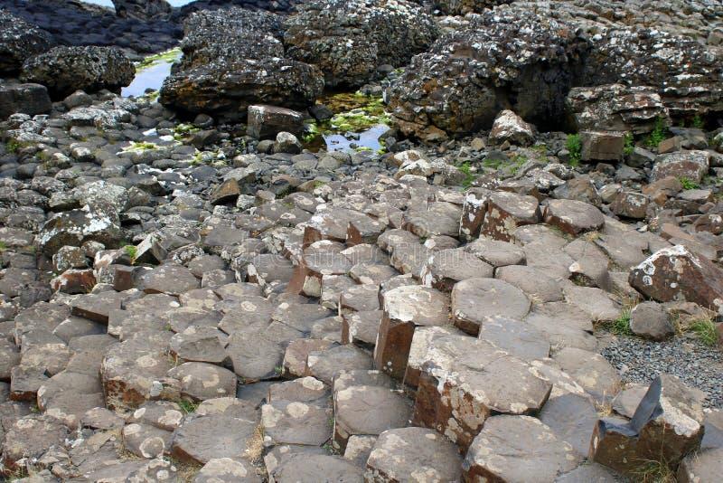 Basaltet vaggar på strandremsan royaltyfria bilder