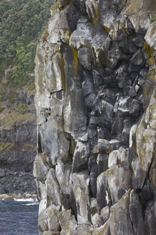 Basaltisk klippa i Terceira ökustlinje Azores skärgård royaltyfri fotografi