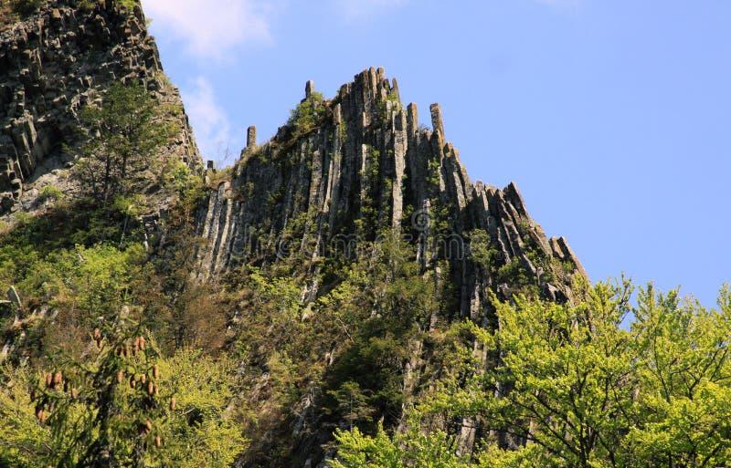 Basaltiska kolonner som dyker upp från skog royaltyfria foton