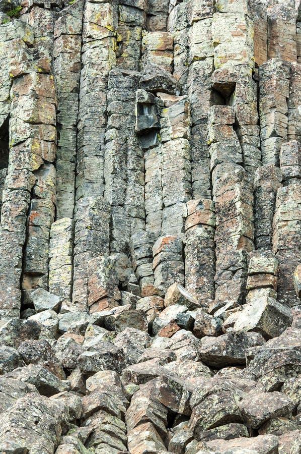 Basaltkolonner av Sheepeater klippor royaltyfri bild