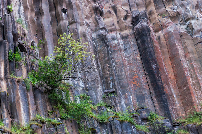 Basaltkvarter arkivbild