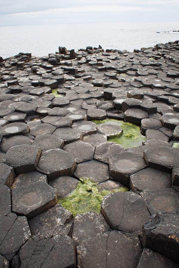 Basaltsäulen, riesige ` s Damm, Co Antrim, Nordirland stockfoto