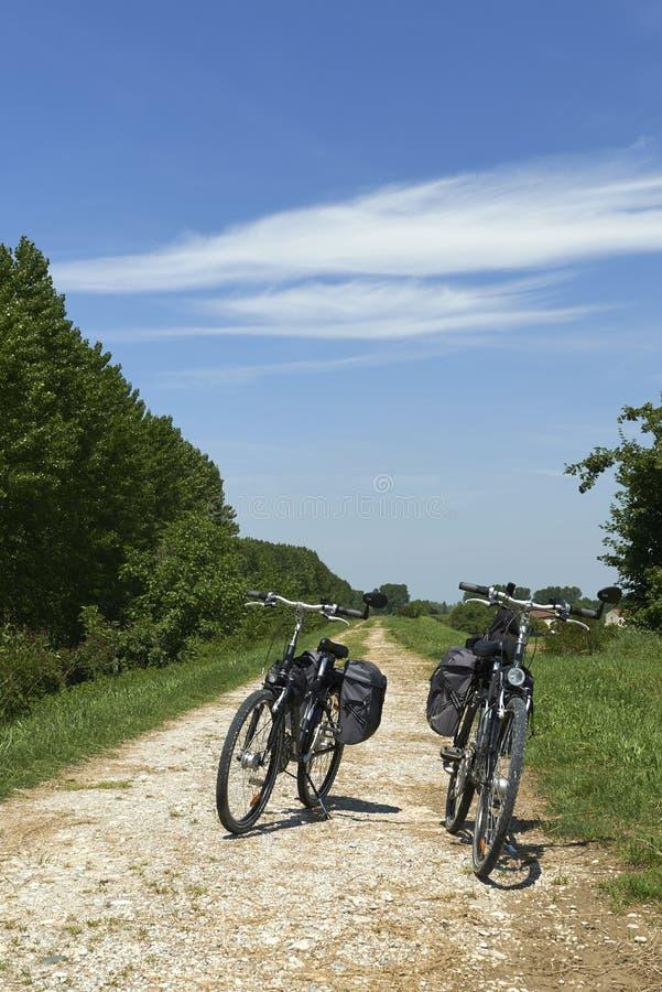 basanaviciaus自行车palanga路径街道 免版税库存照片