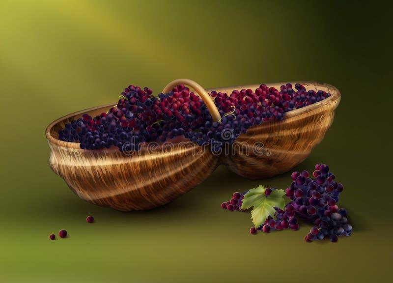 Bascket com uvas ilustração stock