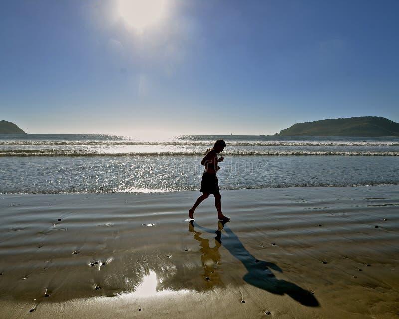 Basculador en la playa imagen de archivo