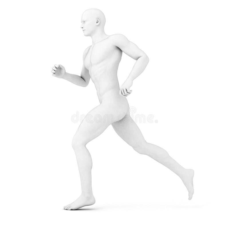 Basculador masculino - anatomía stock de ilustración