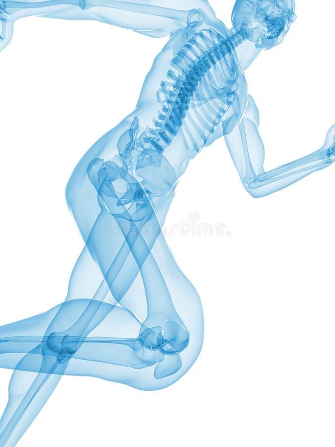 Basculador - radiografía stock de ilustración