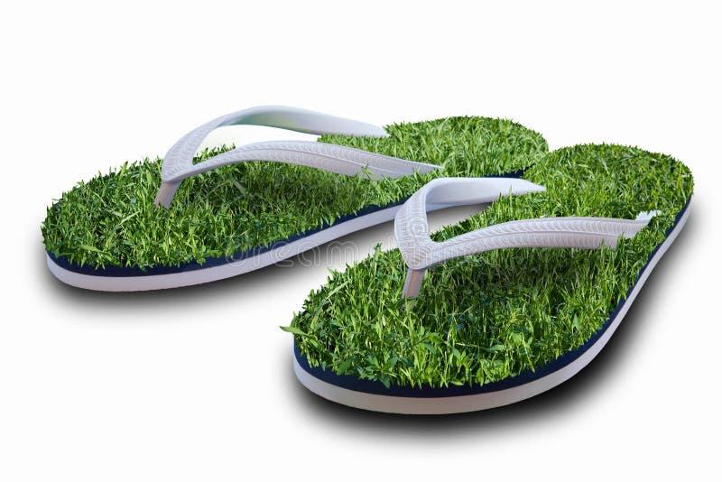 Bascules électroniques avec l'herbe verte image stock