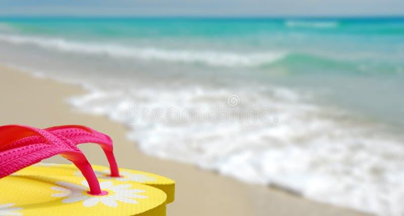 Bascules électroniques sur la plage photo libre de droits