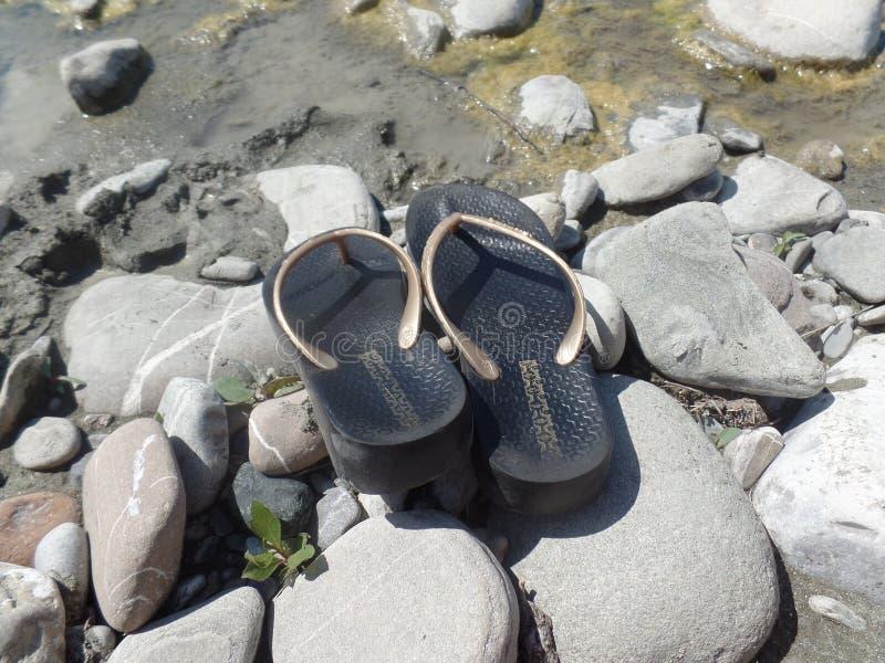Bascules électroniques sur le lit de rivière photographie stock libre de droits