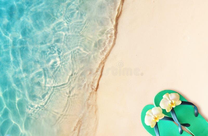 Bascules électroniques sur une plage arénacée d'océan image libre de droits