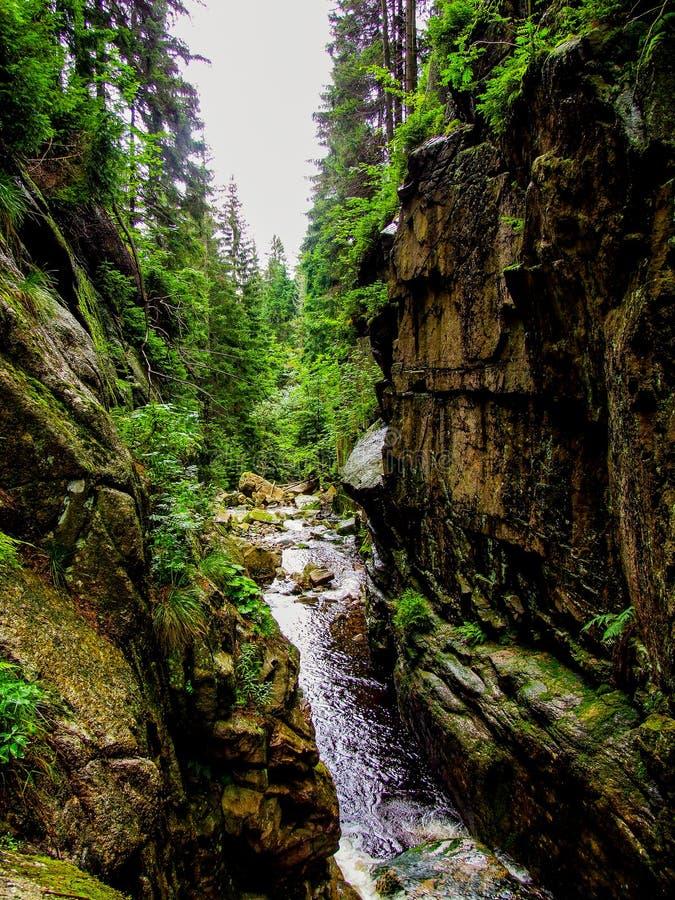 """Basculez le revine près de la cascade du ` s de czyk de """"de KamieÅ située dans la Pologne, en montagnes de Sudetes photographie stock libre de droits"""