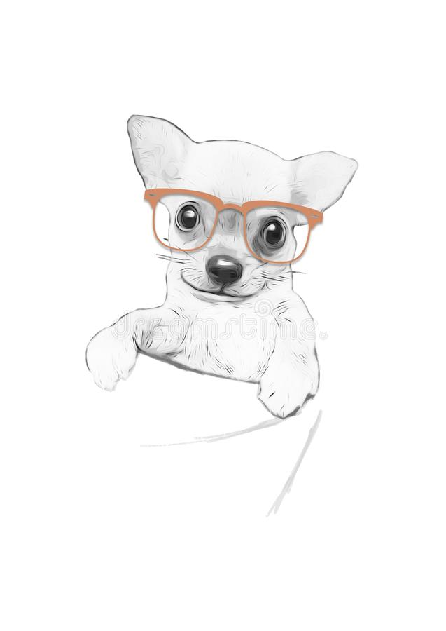 Drawing of Chihuahua with orange glasses stock illustration