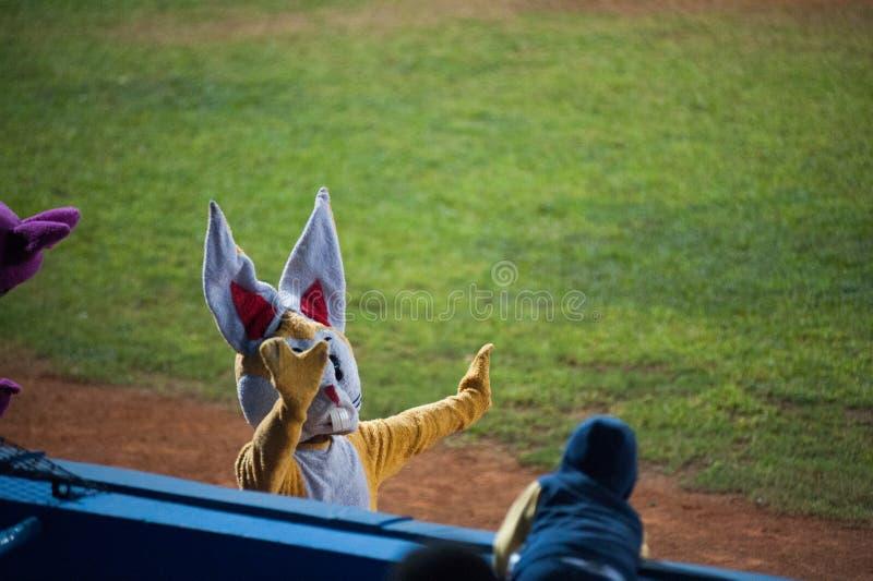 Base-ball Team Cuba Havana Mascots d'Industriales photo libre de droits