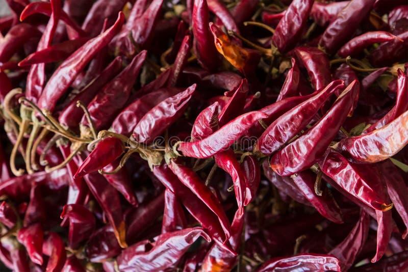 Base culinaire de assaisonnement épicée de cosse de l'Asie de modèle d'épice de piment de fond foncé rouge de claret beaucoup de  photo libre de droits
