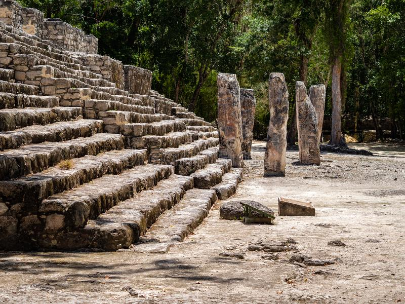 Base of a Mayan ruins with stelas and a forest in the background. In Calakmul, Mexico royalty free stock photo