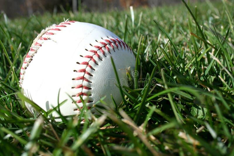 Download Baseball stock image. Image of ball, athletics, game, team - 1550503