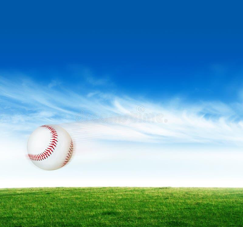 baseball royaltyfri fotografi