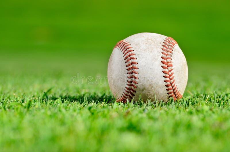 Baseball auf dem Gebiet stockfotos