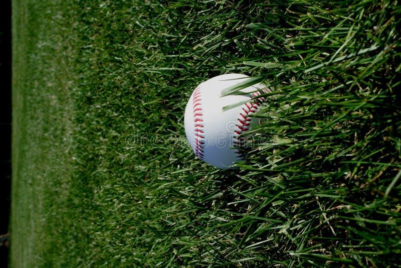 Baseball in erba immagine stock