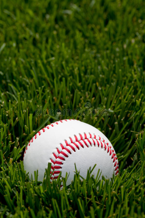 Download Baseball on field stock image. Image of leather, sporting - 15201539