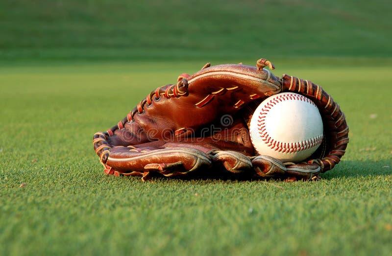 Download Baseball glove stock image. Image of field, training, green - 2310331