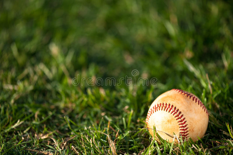 Baseball on Grass stock photography