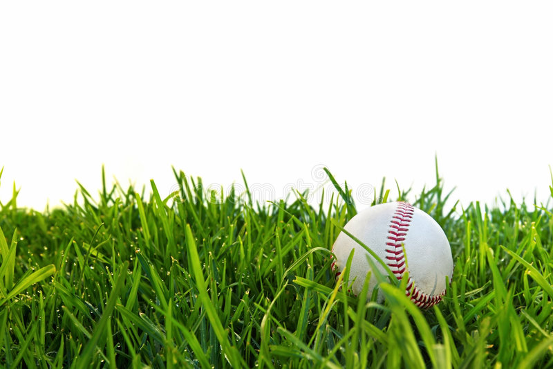 Baseball im Dewy Gras lizenzfreies stockbild