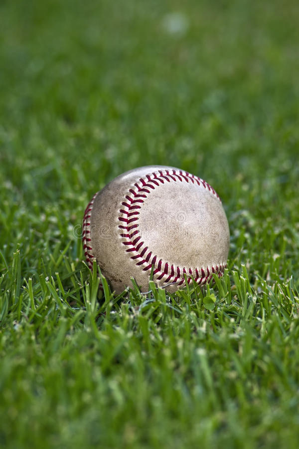 Baseball In Outfield Grass Stock Image