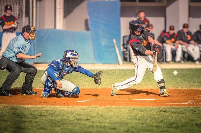 Baseball players during an action stock image