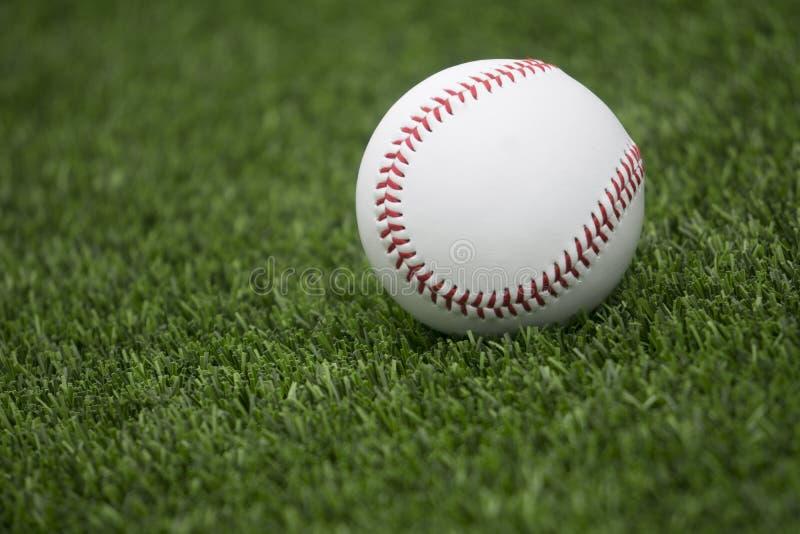 Baseball su erba fotografie stock