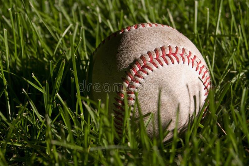 Baseball sul campo immagine stock
