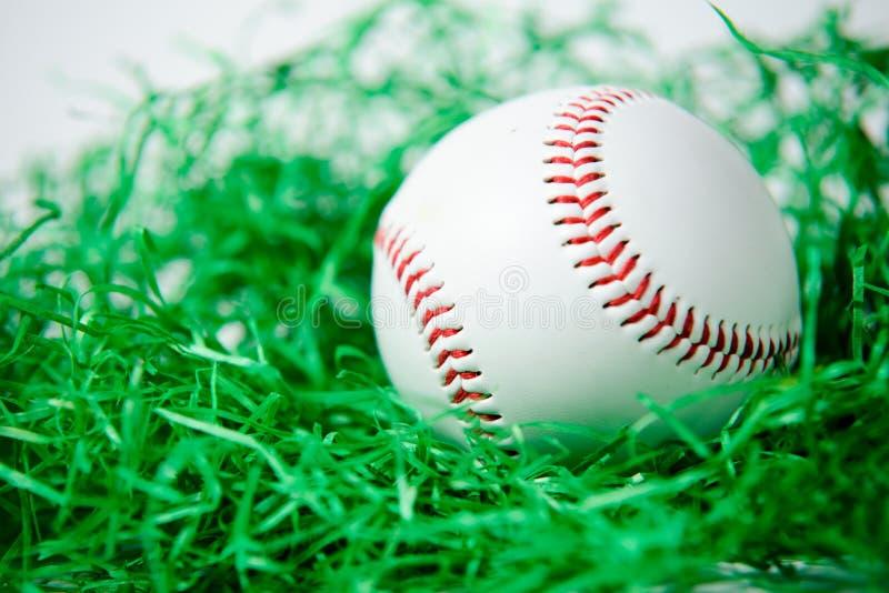 baseballe obraz stock